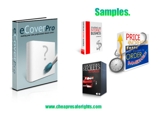 Product picture NEW!* Ecover Pro With PLR*