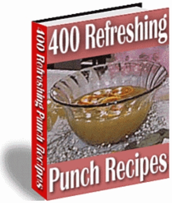 Product picture NEW!* 400  Refreshing  Punch Recipes MRR*
